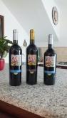 Erdige, fruchtige Rotweine.