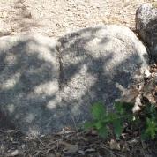 Ein steinernes Herz.