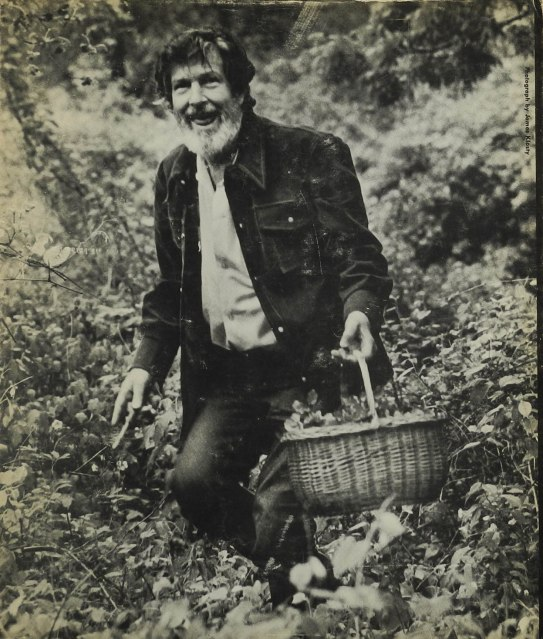 Musik: Cage, John: Mushroom-book. In: M: Writings '67-'72. London: 1973. Poetische Reflexionen über Pilze, Musik und Kultur, mit 24 kalligraphische Tafeln, von Cage, der ein begeisterter Pilzliebhaber war, illustriert. 190,– (Mykolibri, Hamburg)